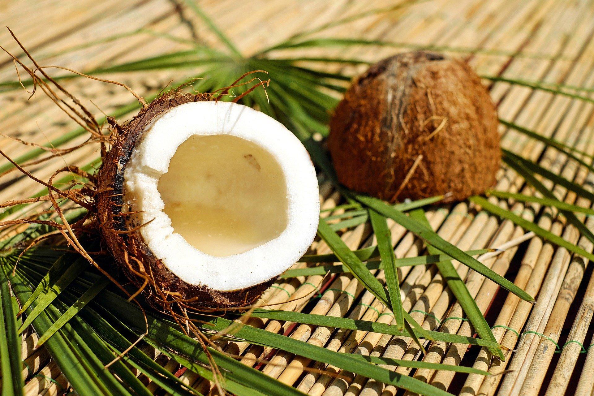 Bio Kokos Reis Drink - Kaufideen. Beste Bio Kokos Reis Drinks finden