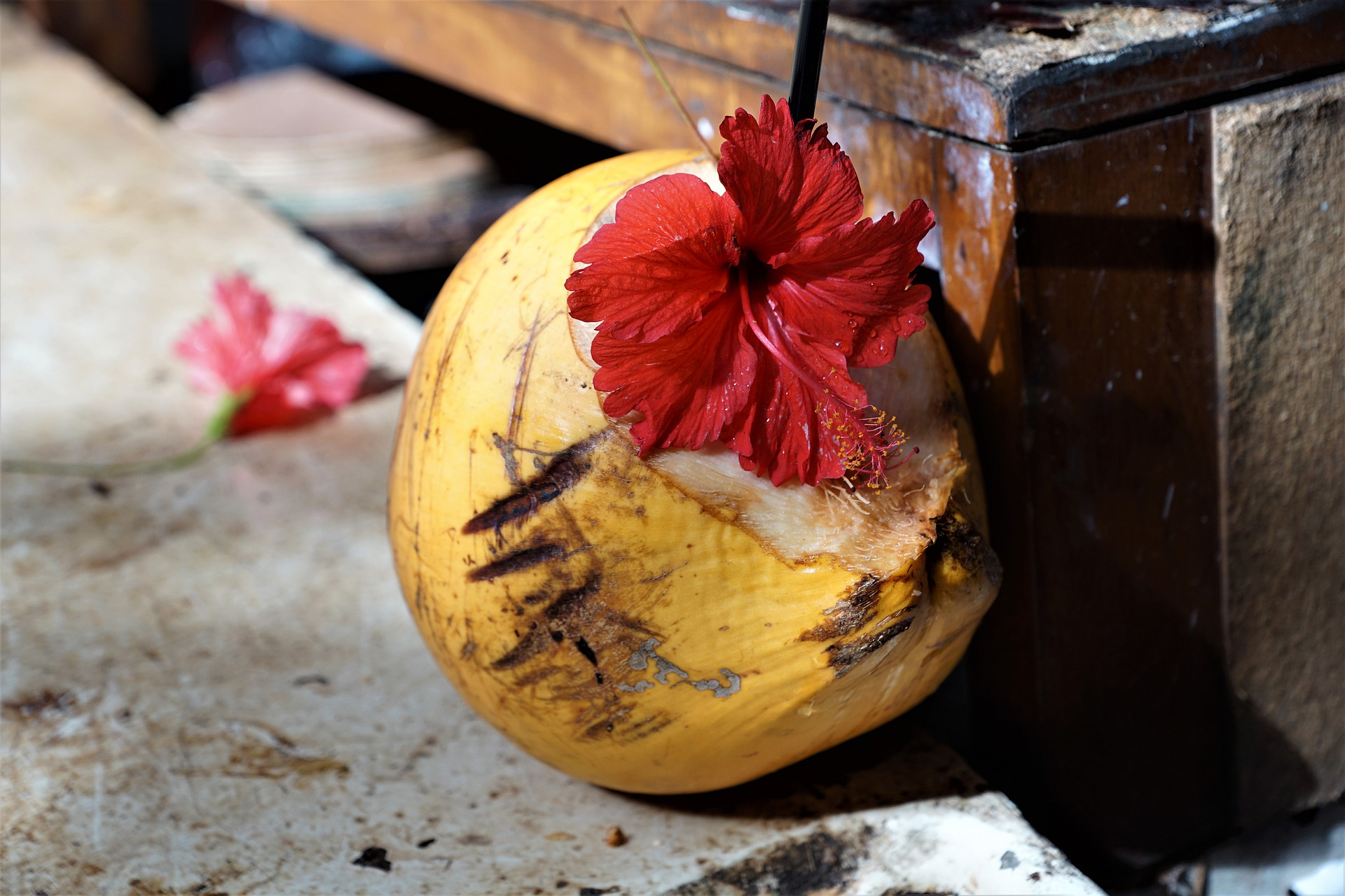 Kokos Drink Bio - Kaufideen. Beste Kokos Drinks Bio finden