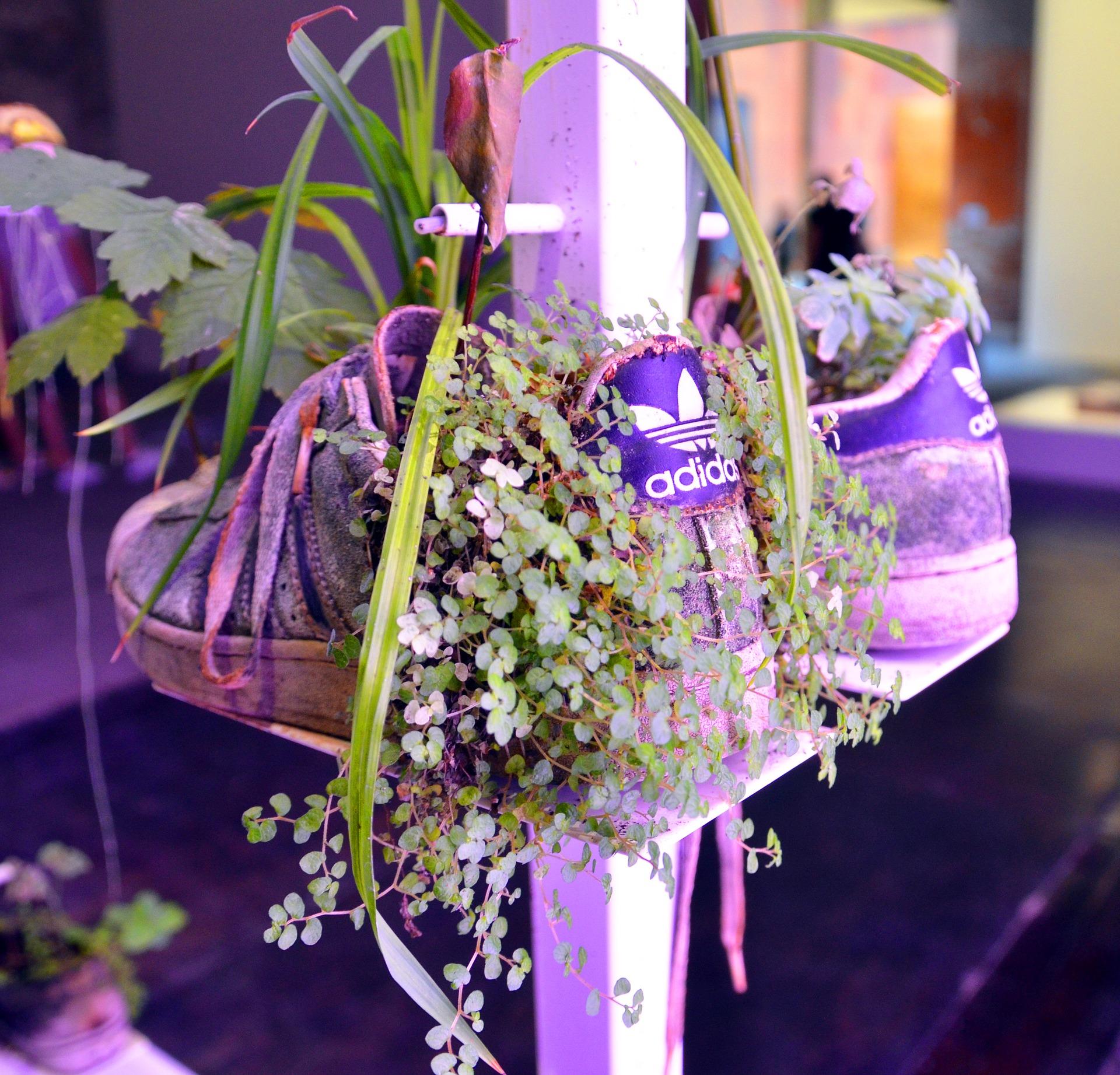Nachhaltige Schuhe - Beste Nachhaltige Schuhe finden