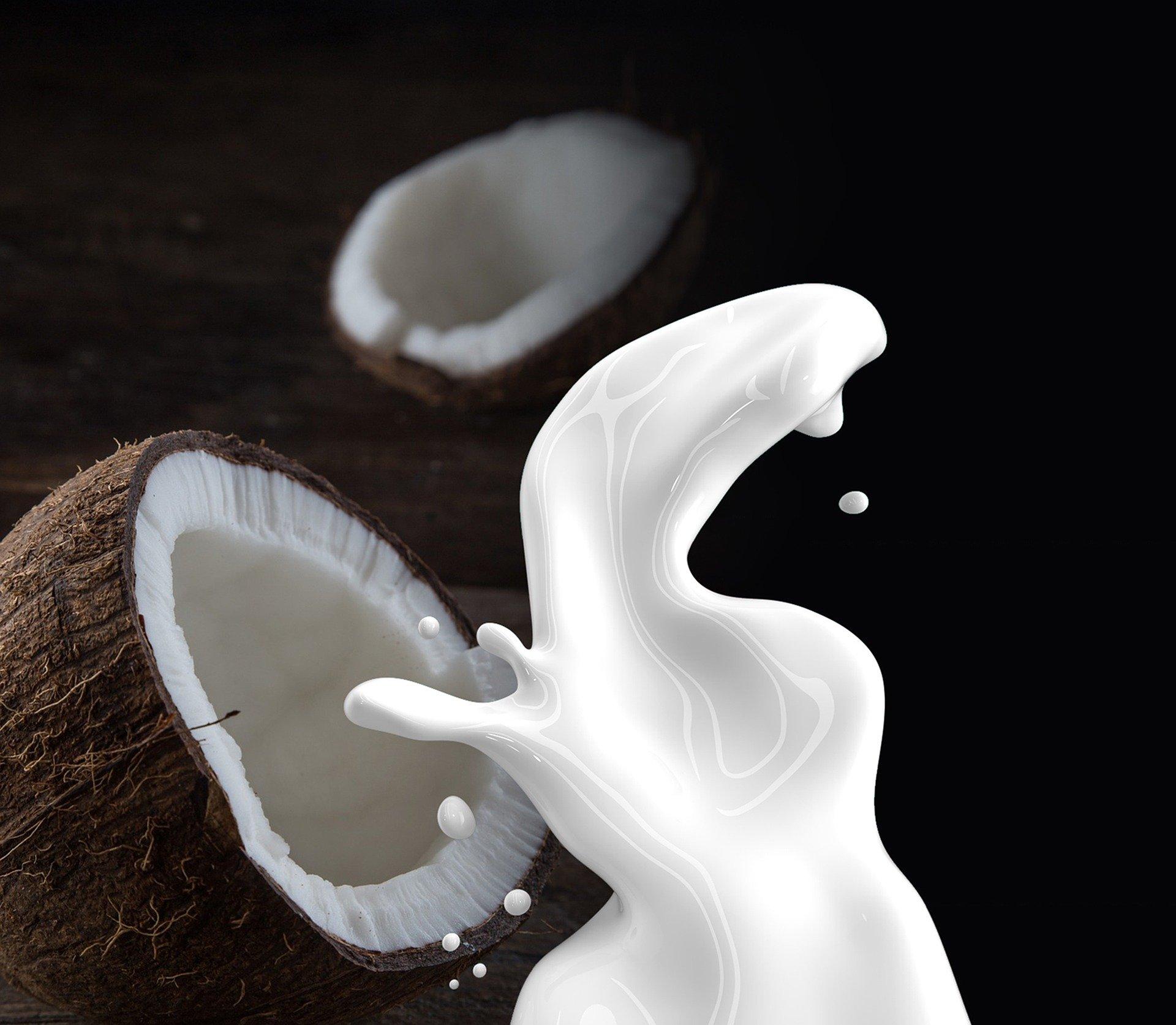 Kokosmilch Pulver Bio - Kaufideen. Beste Kokosmilch Pulver Bio finden