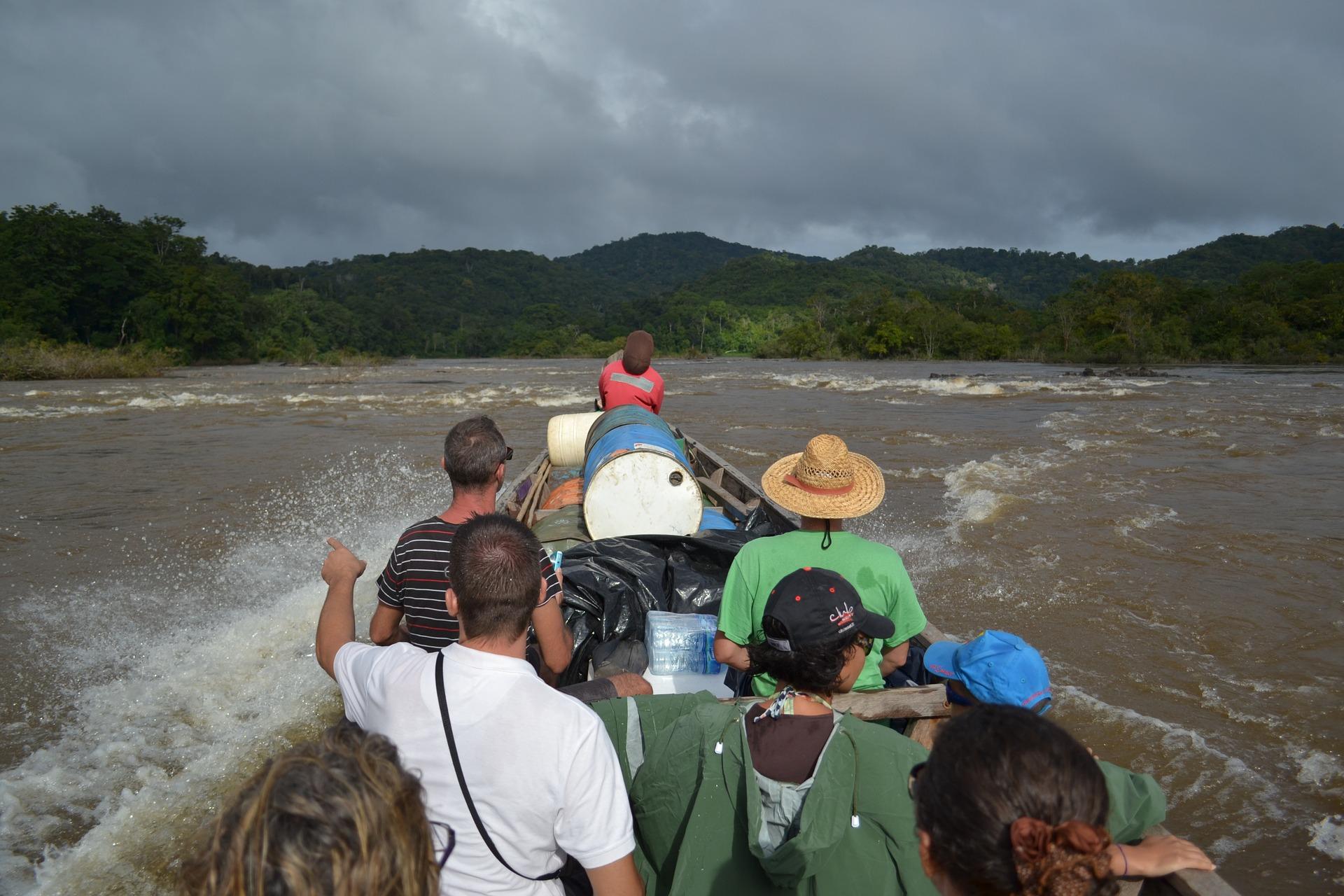 Guarana Pulver Bio - Kaufideen. Beste Guarana Pulver Bio finden