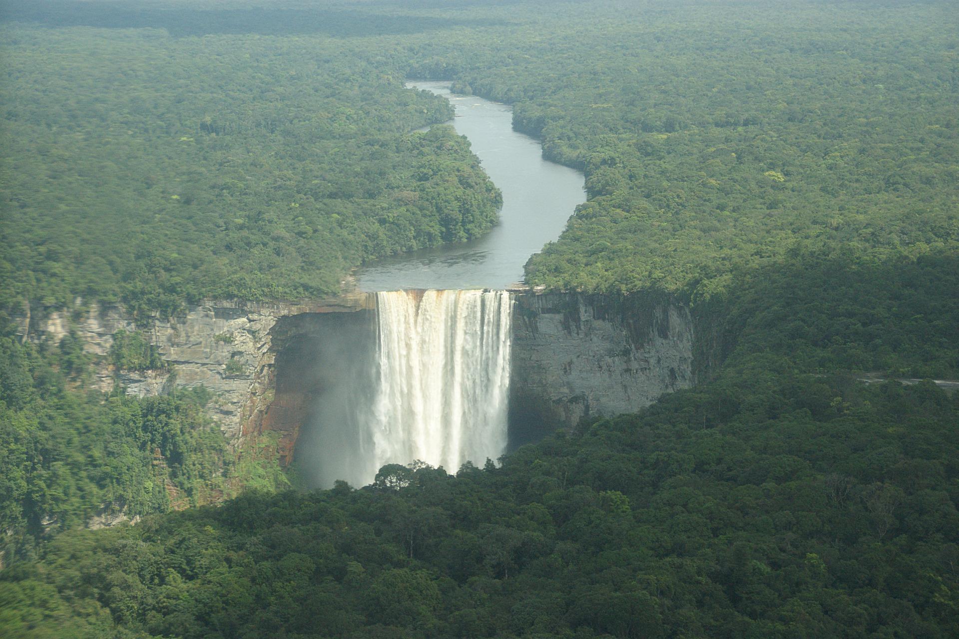 Bio Guarana Pulver - Kaufideen. Beste Bio Guarana Pulver finden